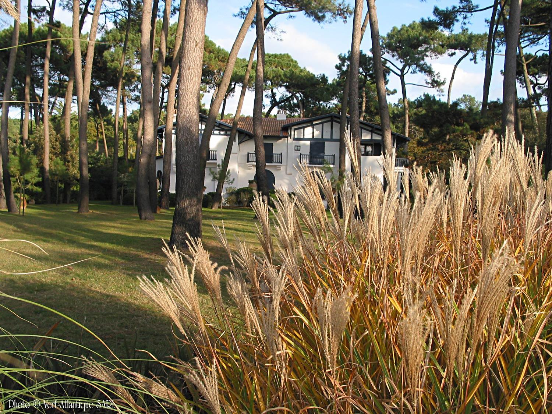 Villa neobasque avec pinède et massif de graminées