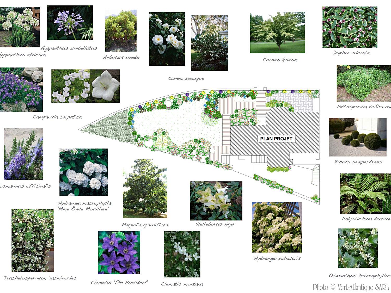 Présentation de projet d'aménagement de jardin, avec plan de plantation, photos de végétaux et légendes