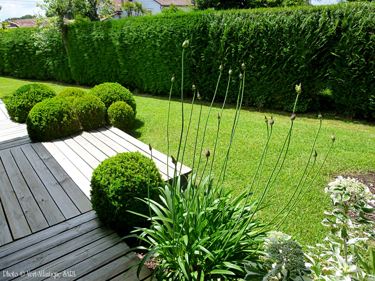 Conception de jardin collection design for Formation conception de jardin