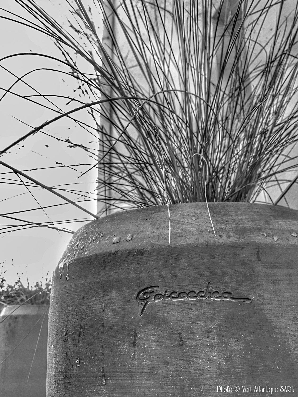 Poterie Goïcoechea, Vase tube, avec graminée, Muhlenbergia capillaris