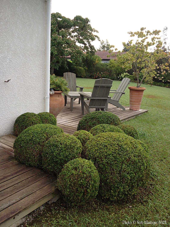Massif de buis boules, Buxus sempervirens, salon de jardin, avec Adirondack en Red Cedar