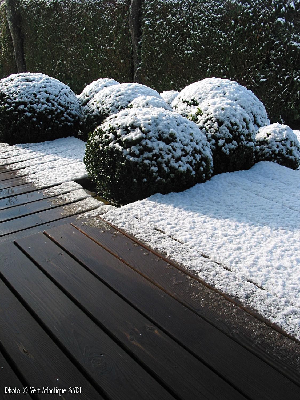 Terrasse en bois, Pin des Landes, massif de buis boules, Buxus sempervirens sous la neige
